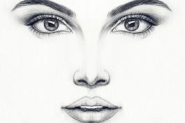 Facial Anatomy Photo