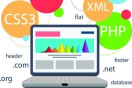 Developing Windows Apps w/ MS Visual Studio 2010 Photo