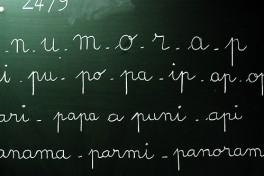 Adult Grammar Level 1: Beginning French 1c Photo
