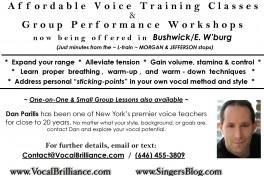 Vocal Brilliance Voice Training Workshop Photo