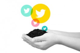 Growing on Twitter: How to Build Communities Photo