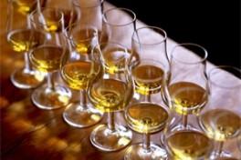 Perfect Pairings: Whiskey & Cheese Photo