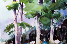 Watercolor Painting Workshop Photo