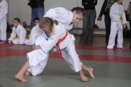 Martial Arts II (Ages: 8-10) Photo