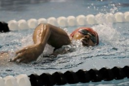Adult Swim III Photo