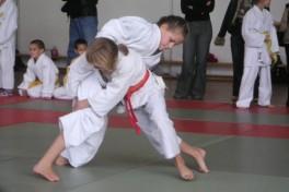 Martial Arts I (Ages: 5-10) Photo
