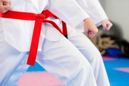 Karate Seido Photo