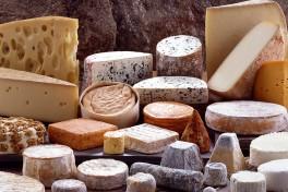 Cheese 101 Photo