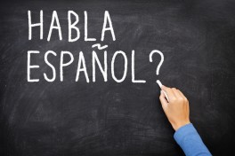 Spanish for Beginners Photo