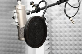 Voice Over for All Levels Photo