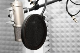 One Day: Voice Over Photo