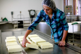 Just Say Cheese: Food Culture from the Berkshires Photo