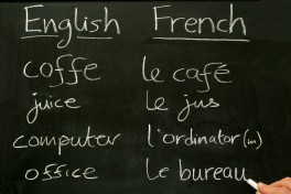 Beginning Conversational French - Combo, Levels 1 & 2 Photo