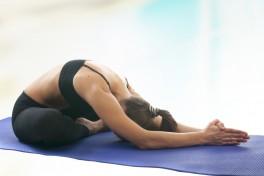 Introduction to Iyengar Yoga Photo