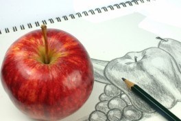 Introduction to Basic Drawing Photo