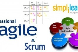 Professional Agile and Scrum Certification Photo