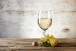 Importer Spotlight: Kermit Lynch Wine Merchant Photo