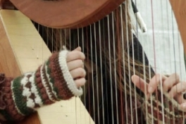 Celtic Harp for Kids Photo