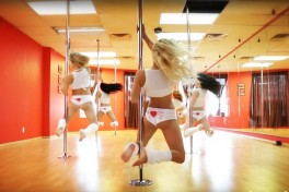 Pole Work  Photo