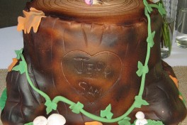 Two Hour Carved Tree Trunk Cake Decorating Class Photo