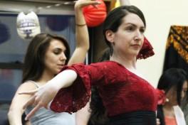 Flamenco II Photo