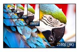 Focus: Video Compression Techniques Photo
