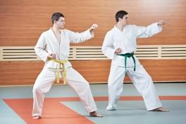 Goju Karate Photo