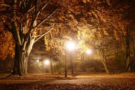 Adult Arts: Warm Autumn Nights Photography Photo