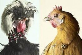 Fancy Chicken Taxidermy Class Photo
