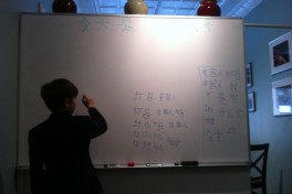 Mandarin - Beginners Lower School (ages 5-9) Photo