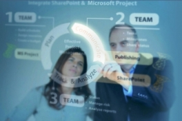SharePoint 2010 for Project Management Photo