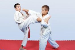 Karate (Beginner/Intermediate) Photo