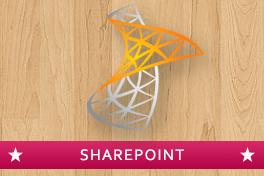 SharePoint 2010 Essentials Photo