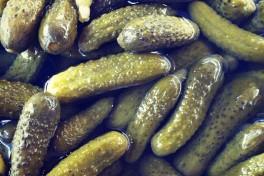 Brine on the Brain: Pickles Photo