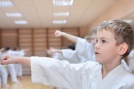 Children's Martial Arts Photo