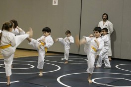 Karate (Advanced) Photo