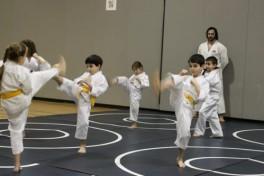 Karate (Advanced) Photo