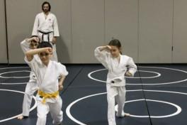 Karate (Intermediate) Photo