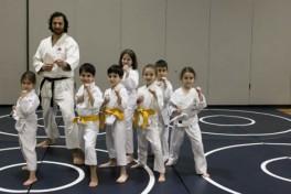 Karate (Beginner) Photo