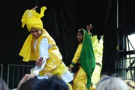 Bhangra Adult (Beginner) Photo