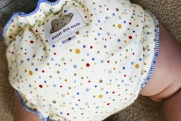 Cloth Diapering Made Simple Photo