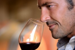 Up-And-Coming California Wine Regions Photo