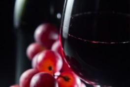 Wine Tasting 101 Photo