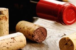 Intro to Italian Wine Photo