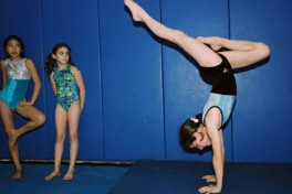 Girls' Recreational Gymnastics2&3(Int/Ad...